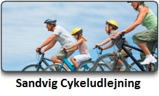 Cykeludlejning